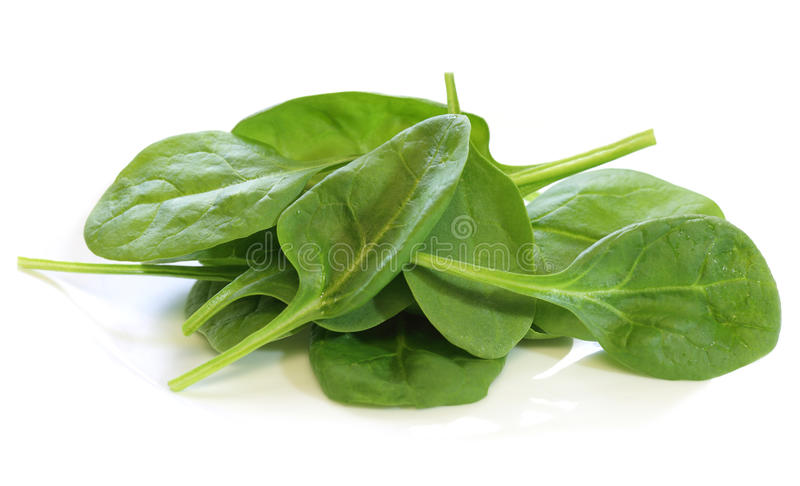 Download Baby Spinach stock photo. Image of vegetable, detail - 17568420