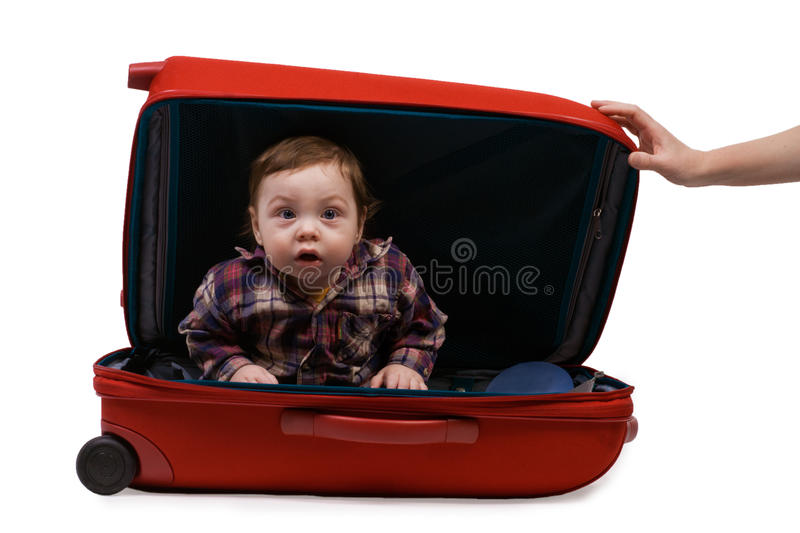 Download Baby in a suitcase stock photo. Image of cheked, looking - 25036598