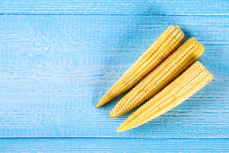 Baby sweetcorn or mini corn. It is typically the eaten whole cob included for the human consumption. It is eaten both raw and cook. Ed. Baby corn is common in stock image