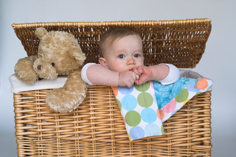 Download Baby and Teddy stock image. Image of trunk, peek, innocent - 2015063