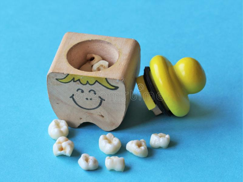 Baby teeth royalty free stock images