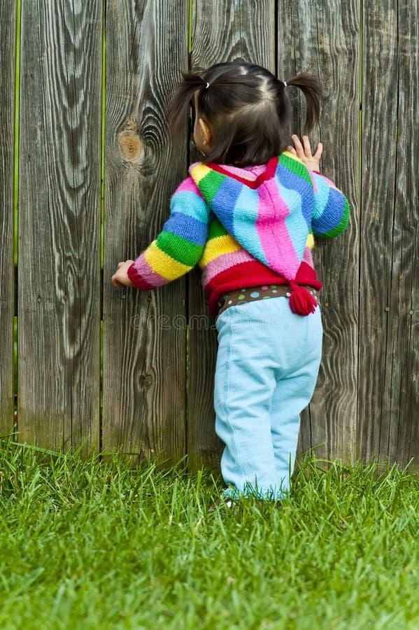 Baby toddler peeping through fence hole. Baby toddler girl peeping through fence hole royalty free stock image