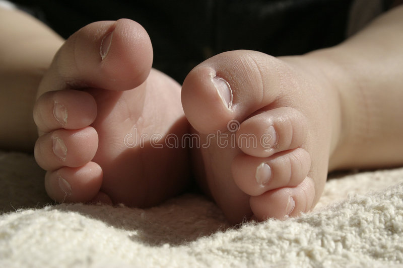 Baby toes royalty free stock images