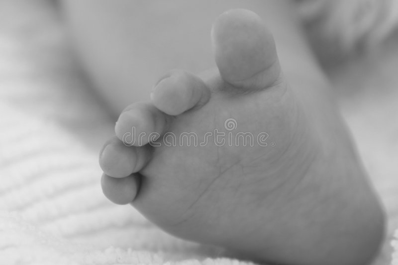 Download Baby Toes Stock Images - Image: 857664