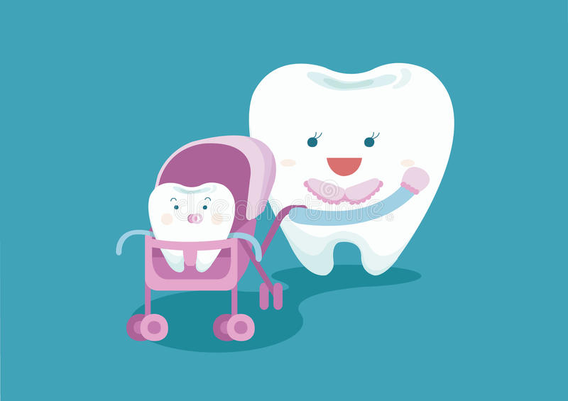 Baby tooth and mom tooth stock illustration