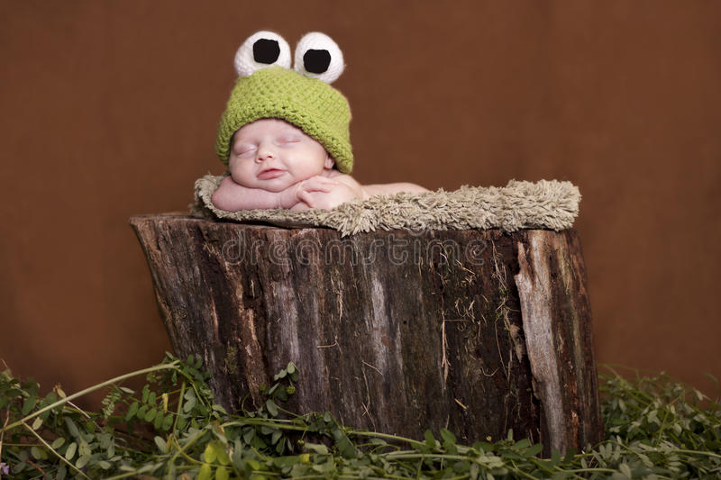 Download Baby tree frog stock photo. Image of smile, horizontal - 20130628