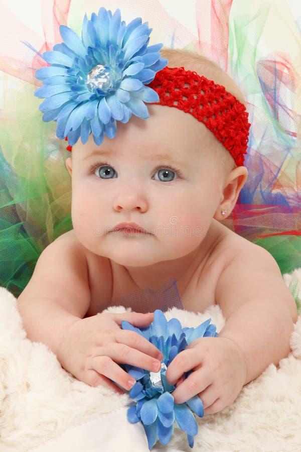 Baby in Tutu royalty-vrije stock foto