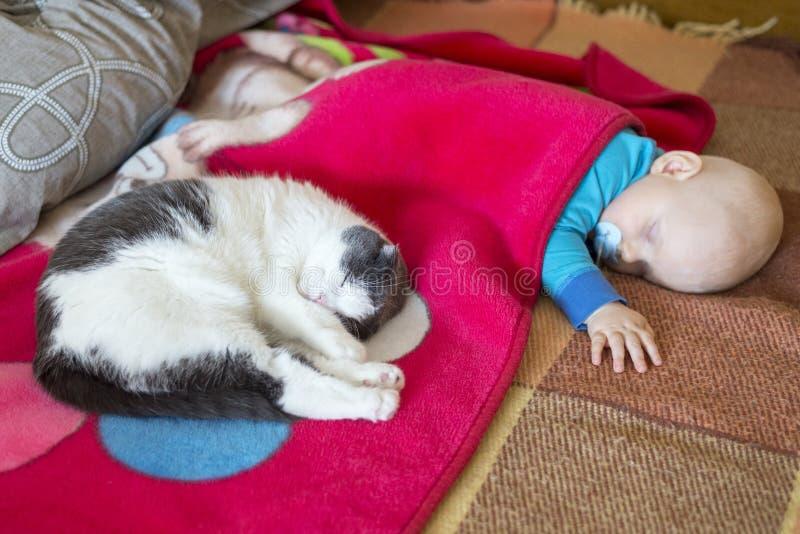 Baby- und Katzenschlaf zusammen im Bett stockbilder