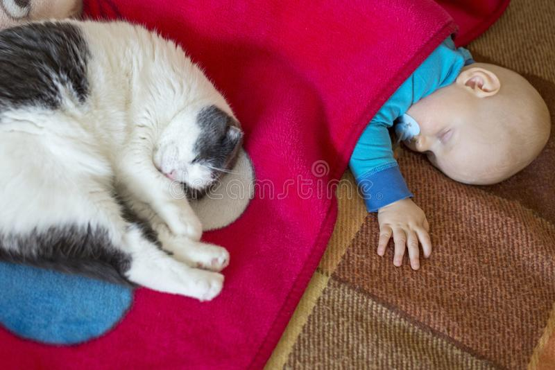 Baby- und Katzenschlaf zusammen im Bett stockfotos
