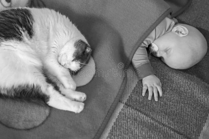 Baby- und Katzenschlaf zusammen im Bett, Schwarzweiss-Foto stockfotografie
