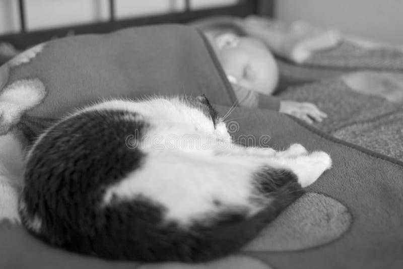 Baby- und Katzenschlaf zusammen im Bett, Schwarzweiss-Foto lizenzfreie stockfotografie