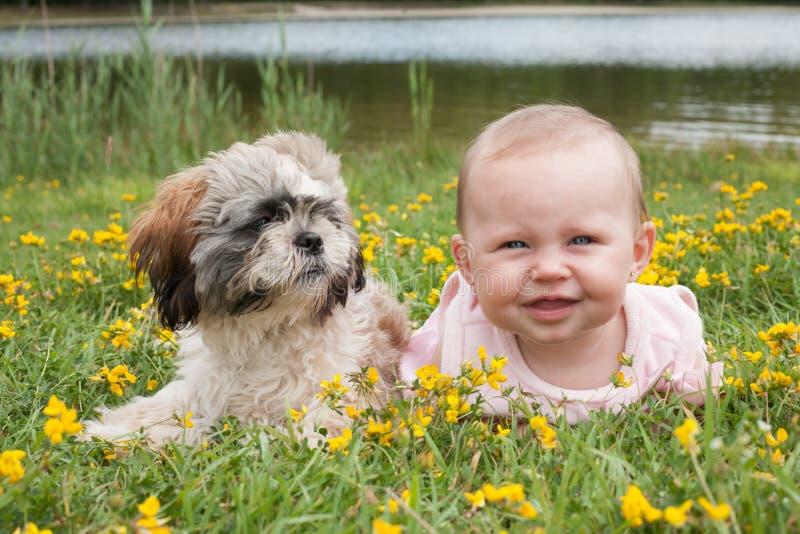 Baby und Welpe auf dem Gebiet mit Butterblumeen lizenzfreies stockbild