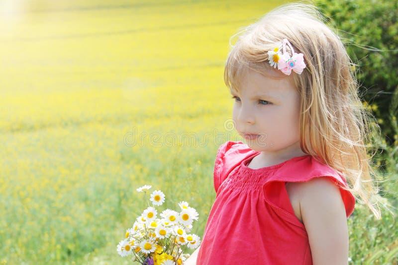 Baby unter Rapssamenfeld mit Kamillenblumenstrauß lizenzfreies stockfoto