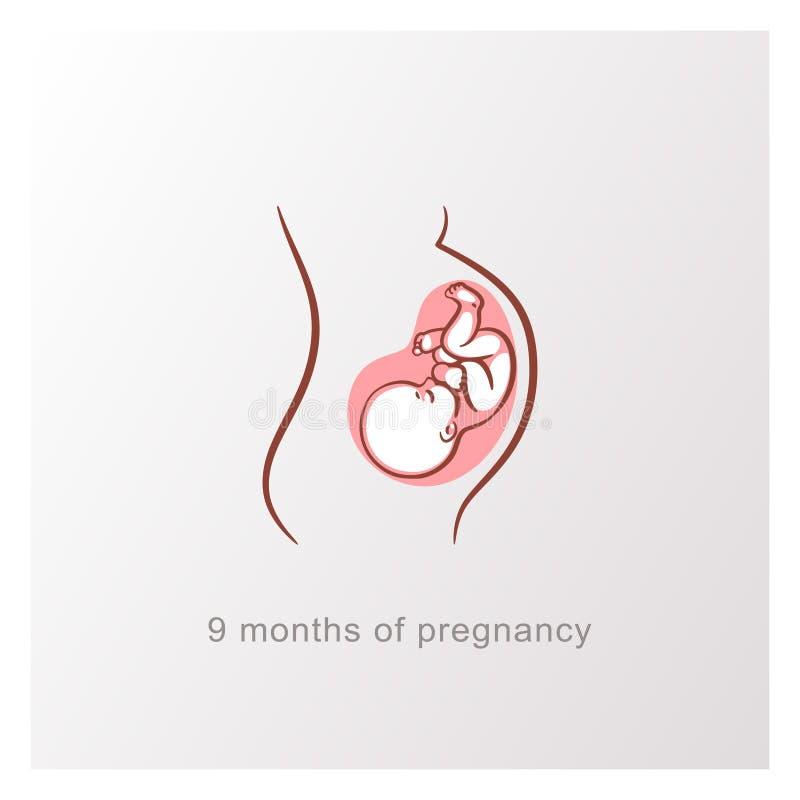 Baby in uterus, hoofd neer silhouet van de 9 maand het zwangere vrouw royalty-vrije illustratie