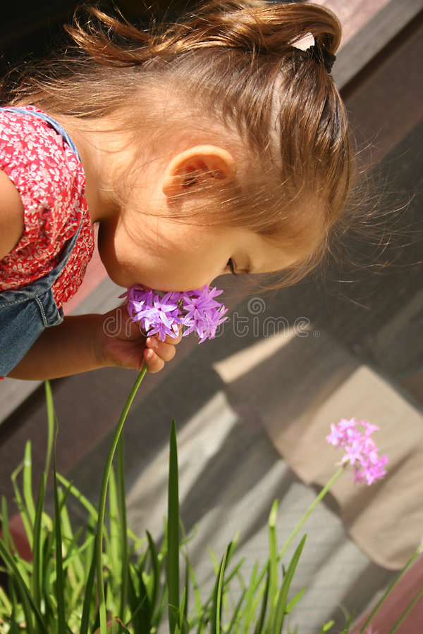 Free Baby With Flowers Stock Image - 309881