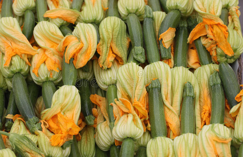 Baby zucchinis with flowers stock images