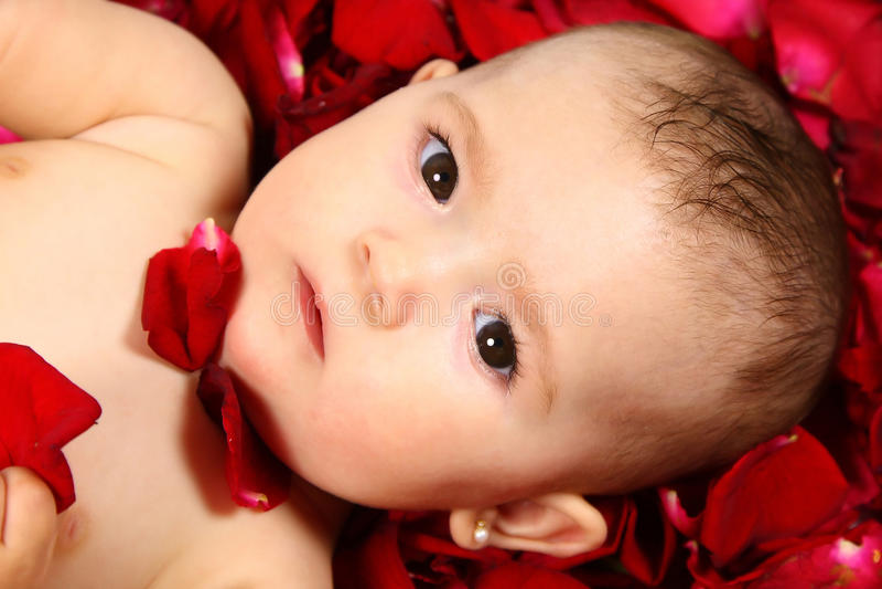 babyansikte arkivfoton
