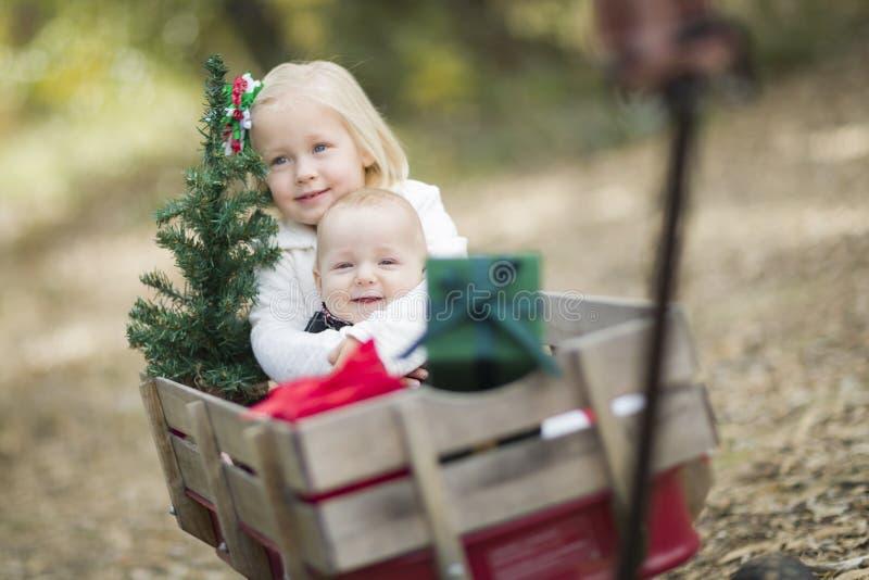 Babybroer en Zuster Pulled in Wagen met Kerstboom stock afbeelding