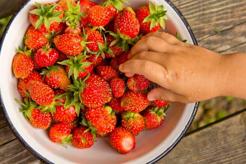 Babyhand, die Erdbeeren von einer Platte nimmt stockbilder