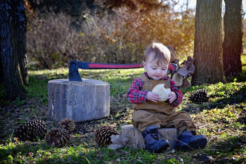 Babyholzfäller, der Sandwich isst lizenzfreie stockfotografie