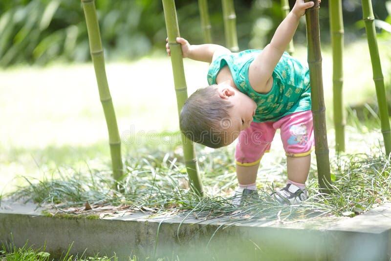 Babyjongen in de zomer stock foto's