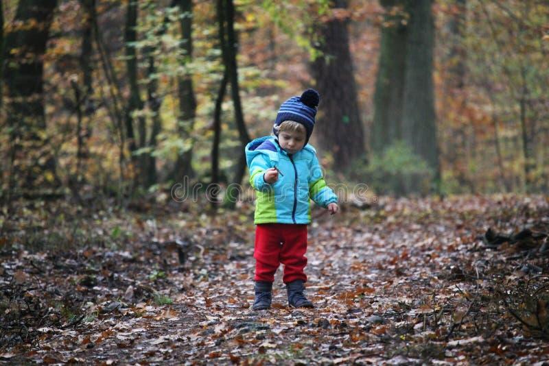 Babyjongen die door het de herfstbos lopen stock foto's