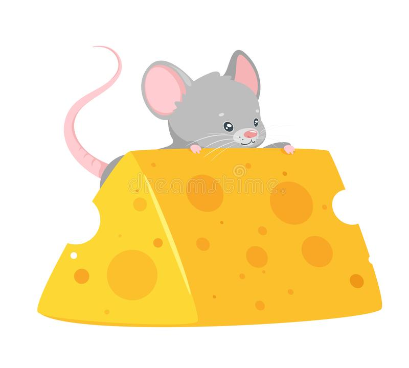 Babymaus, die flache Vektorillustration des Käses isst vektor abbildung