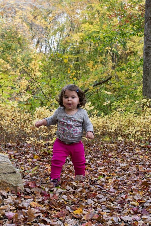 Babymeisje die op bladeren bij de Herfst lopen stock afbeelding