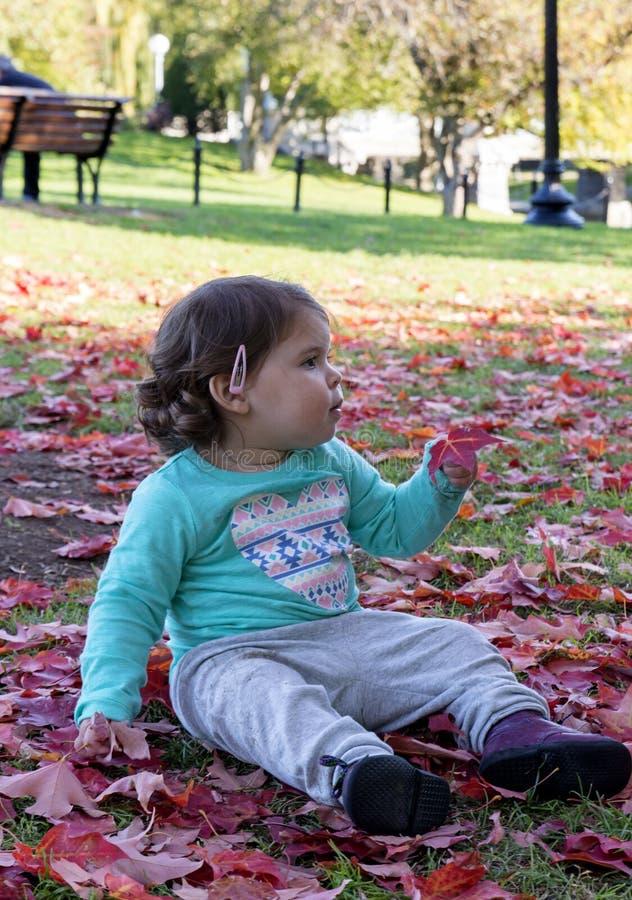 Babymeisje die op rode bladeren bij de Herfst liggen stock fotografie