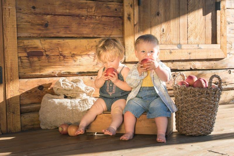 Babymeisje en jongen met appelen royalty-vrije stock afbeelding