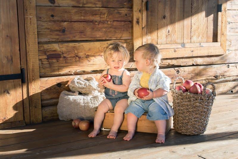 Babymeisje en jongen met appelen royalty-vrije stock foto's
