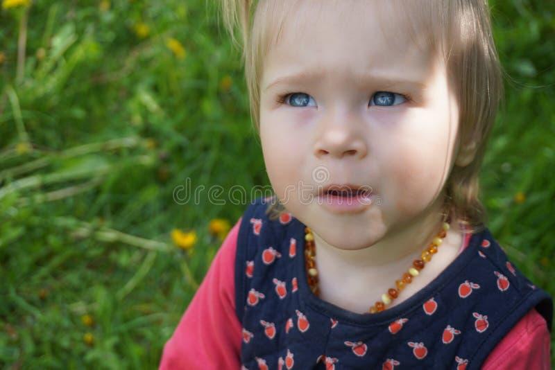 Babymeisje met verbazende grote blauwe ogen stock foto's