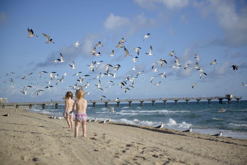 Babys auf einem Strand stockfotos