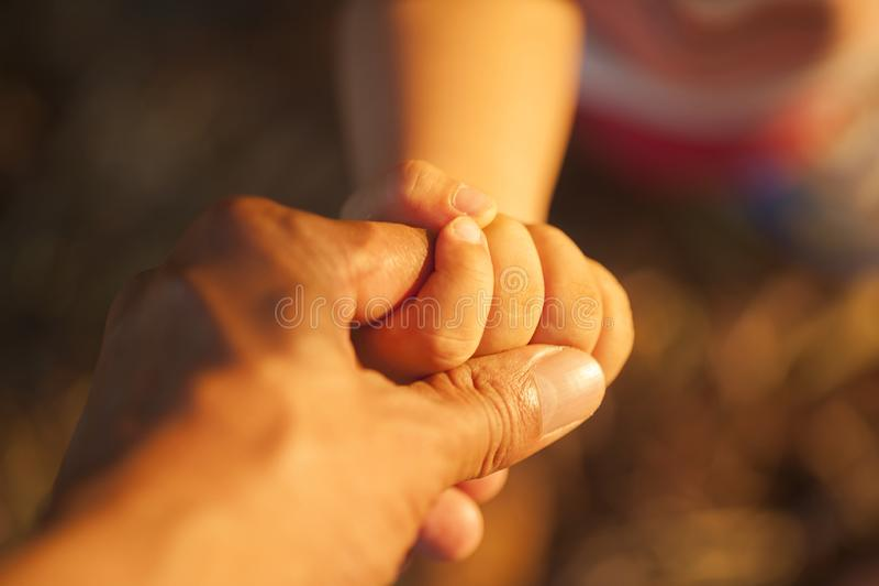 Babys hans faders för hand håll hand i solnedgångtid fotografering för bildbyråer