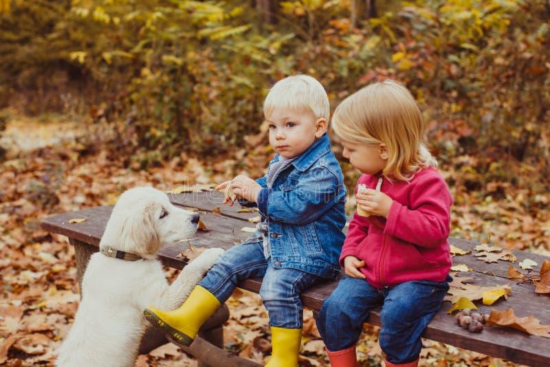 Babys und Hündchen im Herbstpark lizenzfreies stockbild