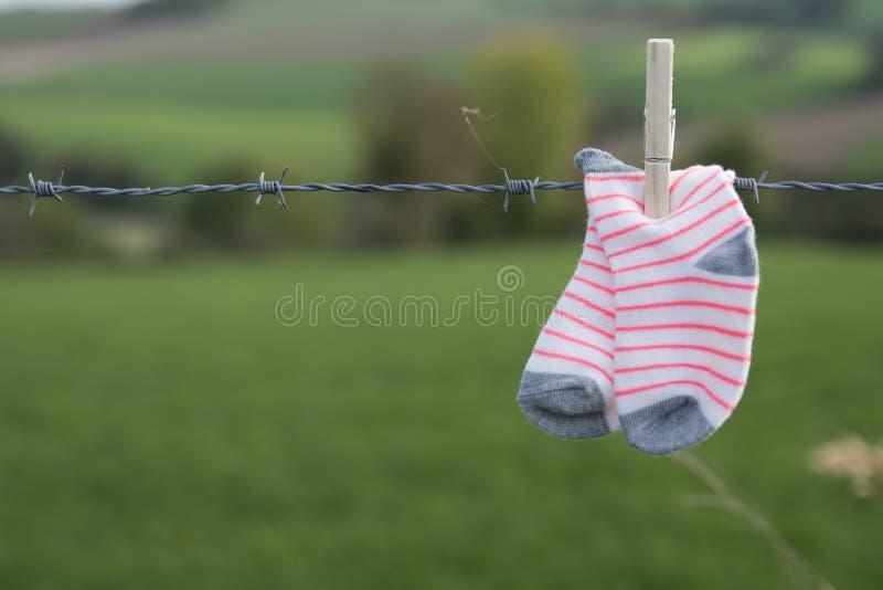 Babysocken, die mit hölzerner Wäscheklammer auf Stacheldraht, gegen grünen Hintergrund trocknen stockfotografie