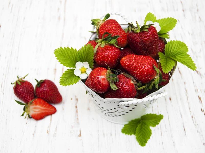 Bac avec des fraises images libres de droits