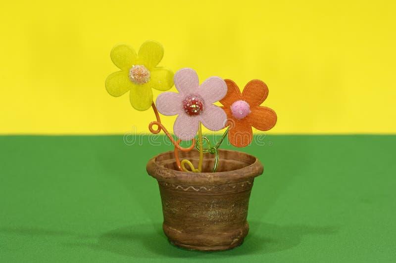 Bac de fleur photos libres de droits