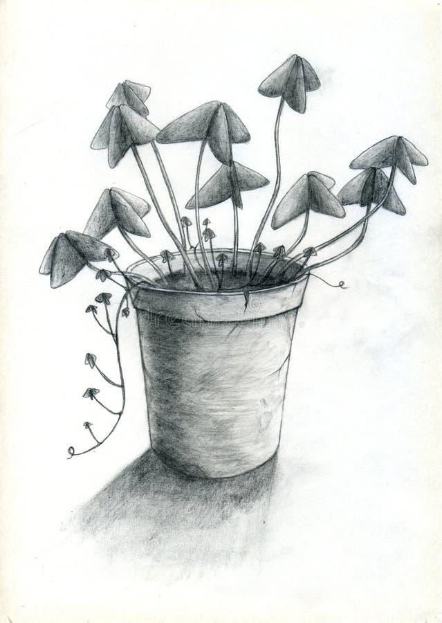 Bac De Fleur Photographie stock libre de droits