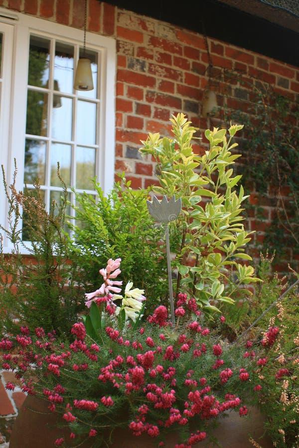 Download Bac de patio photo stock. Image du cottage, outdoors, jardinage - 8661620
