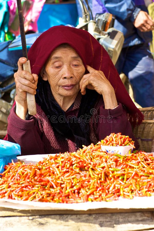 Bac Ha de Markt Vietnam van Landbouwers royalty-vrije stock fotografie