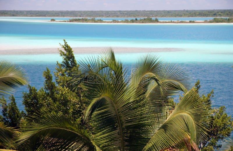 bacalar laguna стоковая фотография rf
