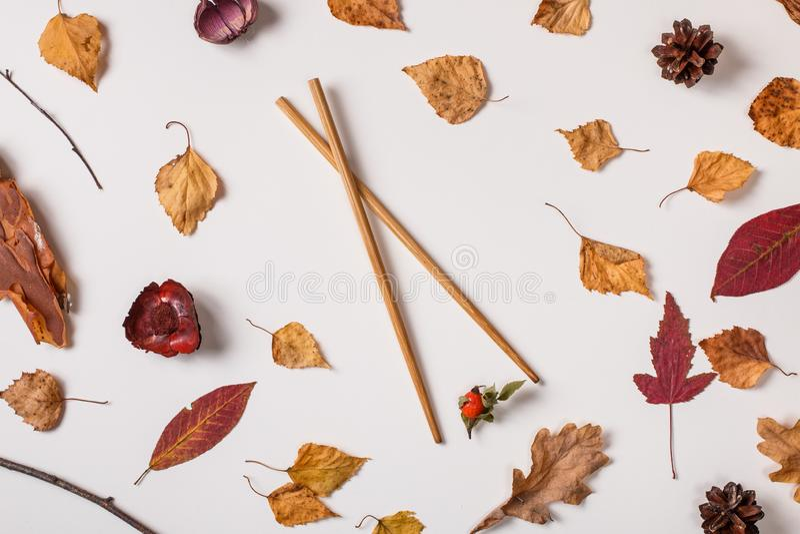 Bacca asiatica della tenuta dei bastoncini nell'insieme di autunno fotografia stock