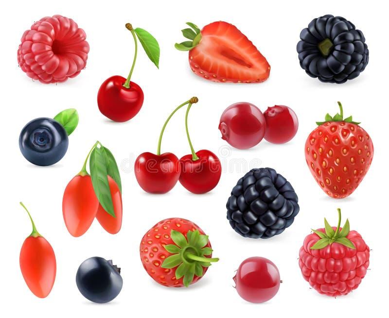 Bacca della foresta Frutta dolce icone di vettore 3d messe illustrazione vettoriale