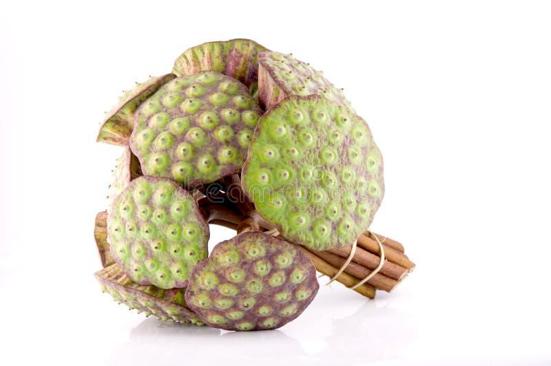 Baccello del loto, frutta locale tailandese immagine stock