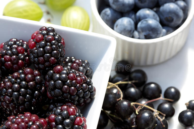 Bacche di estate - mirtilli, more, ribes neri ed uva spina al sole fotografia stock libera da diritti