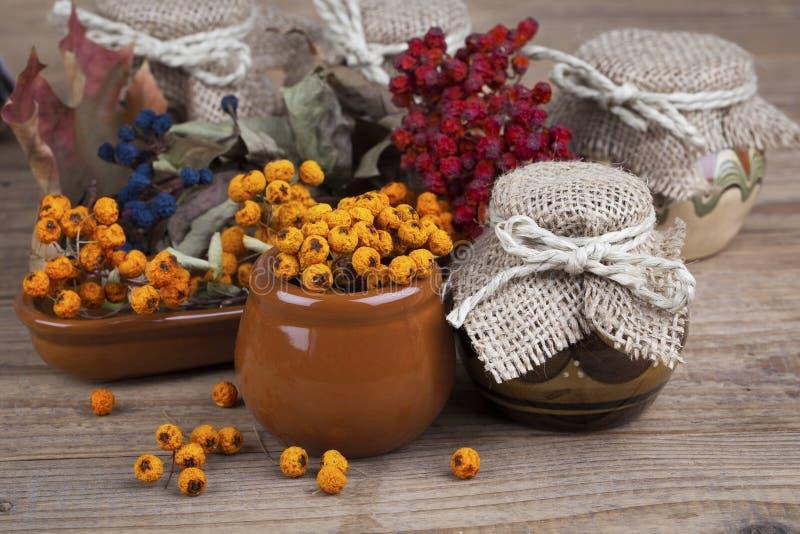 Bacche di sorbo nei vasi di argilla immagine stock libera da diritti