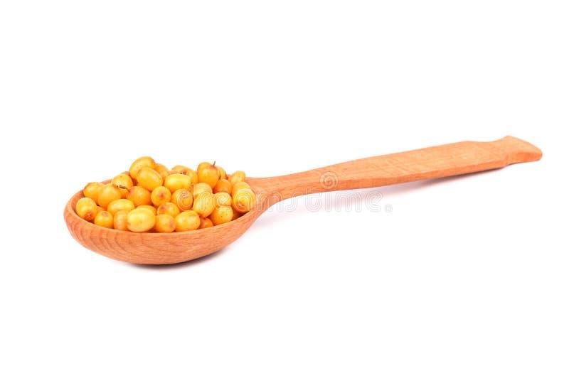 Bacche di spincervino in un cucchiaio immagine stock