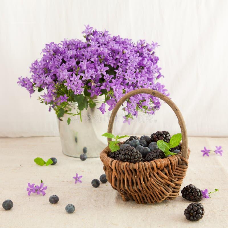 Bacche e fiori fotografia stock