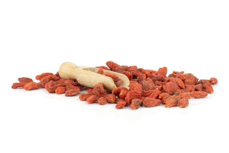 Bacche rosse secche di goji isolate su bianco fotografie stock libere da diritti